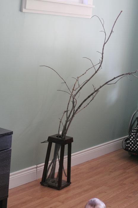 Spooky Tree 001 Edit 465