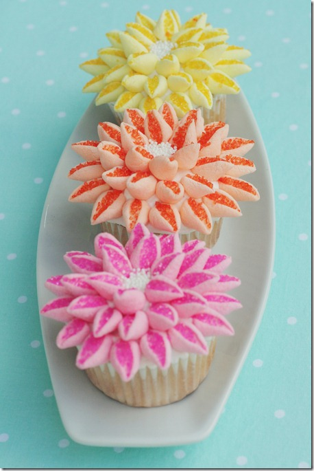 Flower Cupcakes 023 Edit